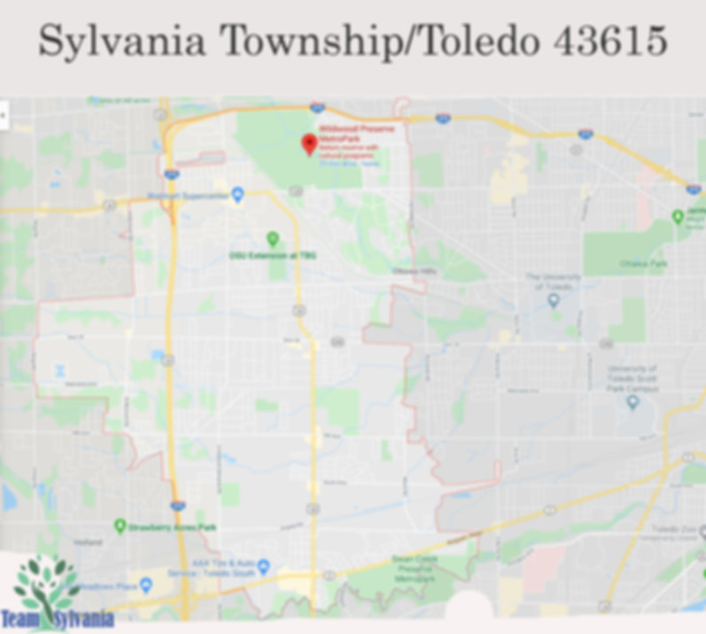 map of township 43615