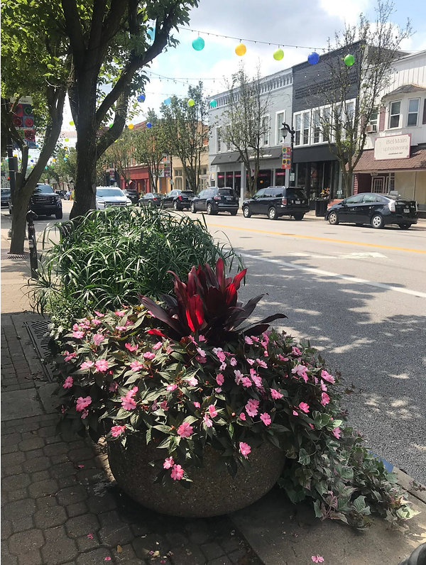 Downtown Sylvania 2021