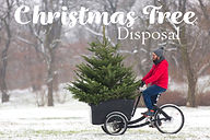 christmas tree disposal 2020