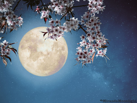The Supermoons Are Coming