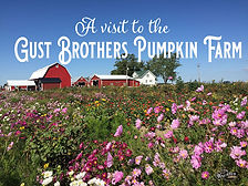 a visit to the gust pumpkin farm
