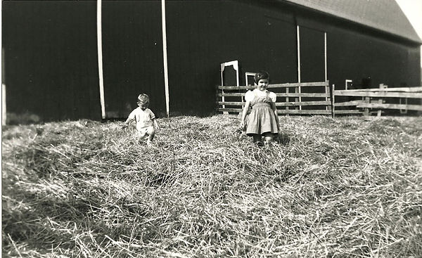 gust family fun 1912