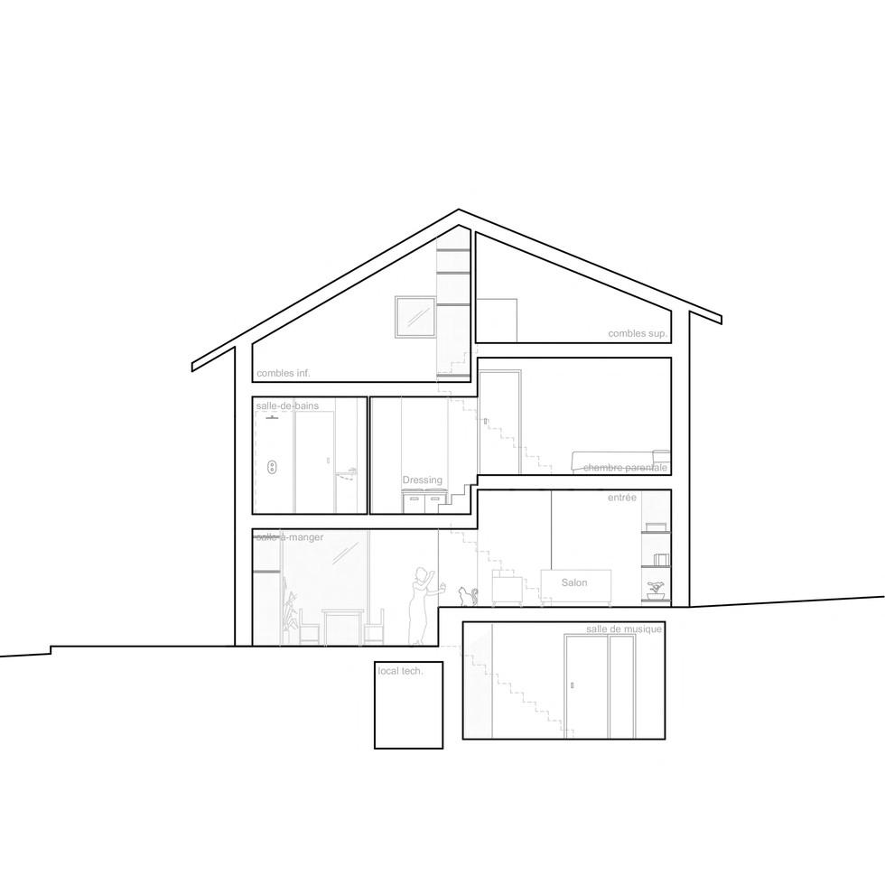 coupe niveau 01_©tangram architectures.jpg