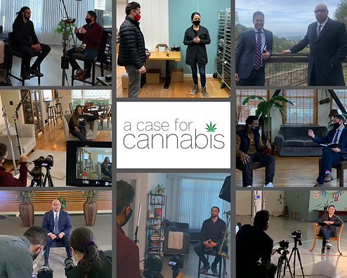 Case for Cannabis Collage.png
