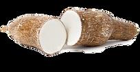 gluten-free-yuca-root.png