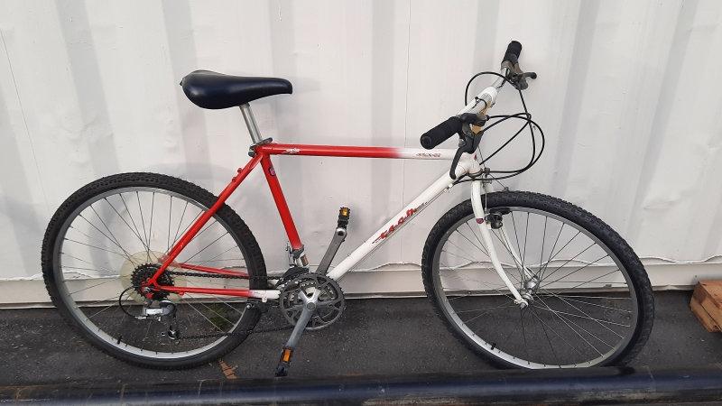 Vintage Tech Nova Mountain Bike