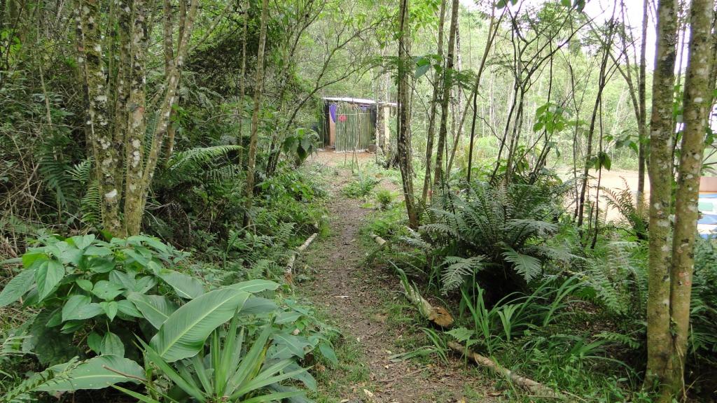 Banheiros Secos no charme florestal