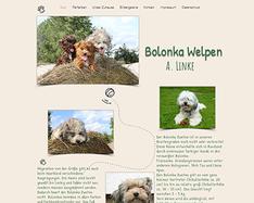 bolonka-welpen.png