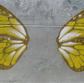 Spilt Wings