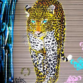 Ferocious Leopard