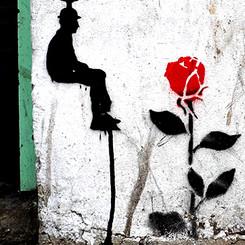 Faucet Rose