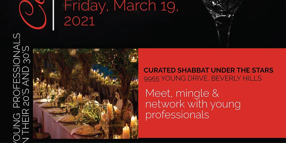 Young Professionals Shabbat Under the Stars