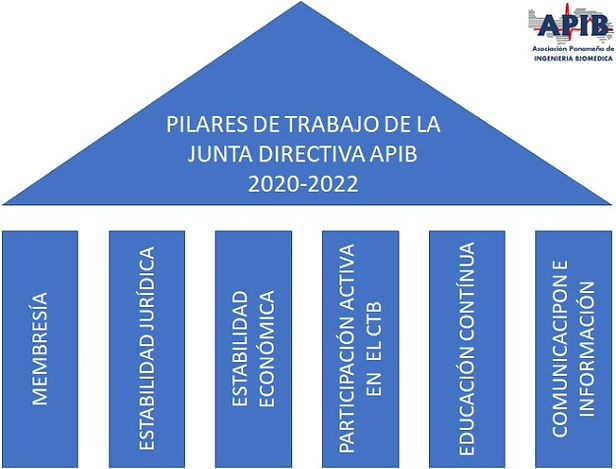PILARES%2520APIB_edited_edited.jpg