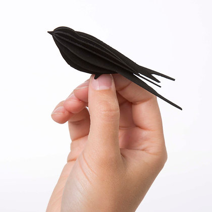Petite Hirondelle - noire