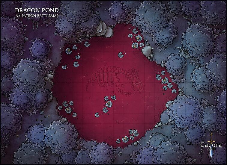 Dragon Pond (Variants)