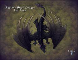 Black Dragon Display