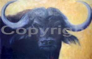 Water Buffalo II of III