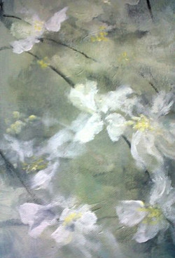Fading Clematis