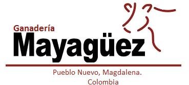 Ganadería+Mayaguez