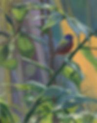 web Painted Morning.jpg