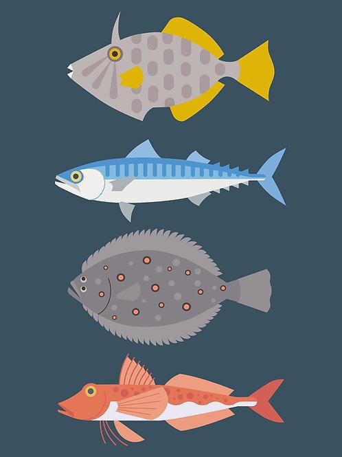 New Zealand Fish #1