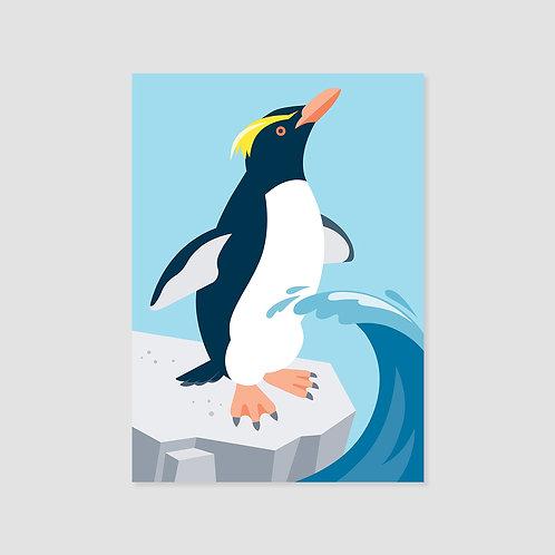 Fiordland crested penguin