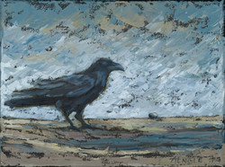 The Raven and The Pebble