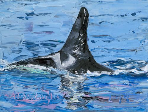 Gaia - Orca L78