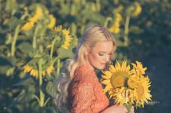 sunflowers032.jpg