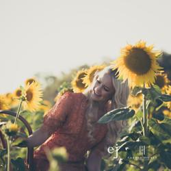 sunflowers039.jpg