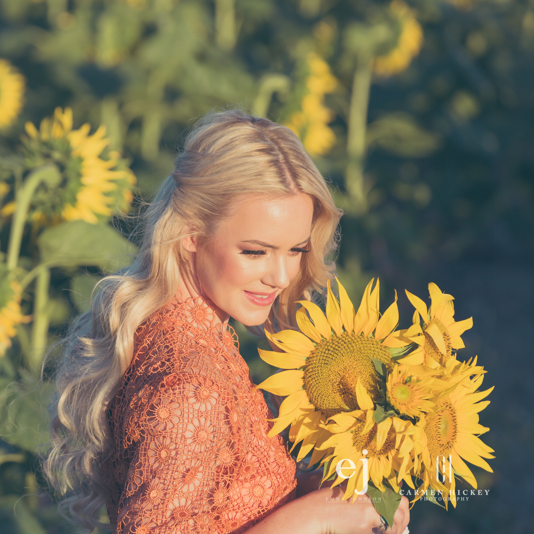 sunflowers031.jpg