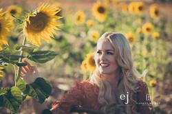 sunflowers041.jpg