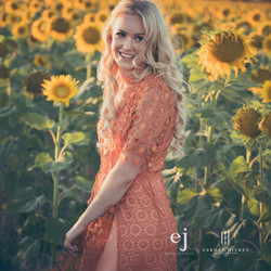 sunflowers025.jpg