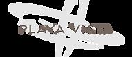 playavista-logo.png