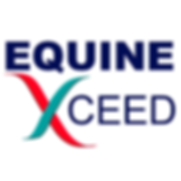 equinexceedlogolarge.png