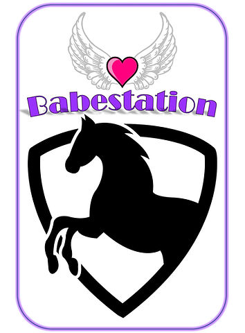 Babestation_logo_resized1_edited.jpg