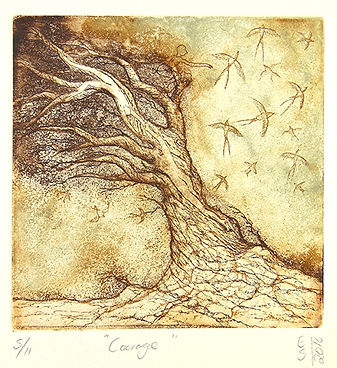 Elmari Steyn | Courage | Etching and Aquatint | 28 X 31cm | 2016