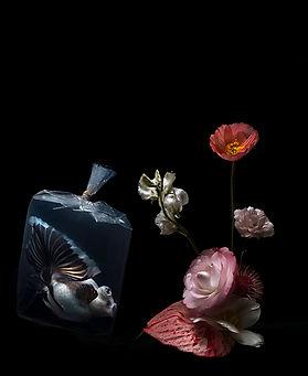 Lilli Waters   In Dreams   archival pigment print   60 x 73.3cm   2017