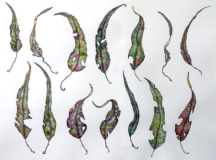 India Gladwood - Hinterland Leaves, watercolour & ink on paper, 2018