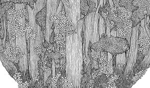 Constance Hunter | Top Heavy Forest | Pen on paper | 50 x 65cm | 2015