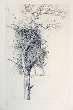 Elmari Steyn | Eyrie | etching and aquatint on archival paper | 20 x 30cm | 2017