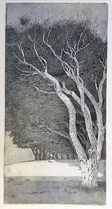 Elmari Steyn | Umbra | etching and aquatint on archival paper | 15 x 30cm | 2017