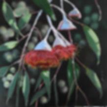 Julie Hollis, 'Gumnut Blossom', acrylic on canvas, 2019