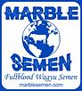 MarbleSemenLogo.png