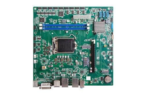 Giada-IBC-961