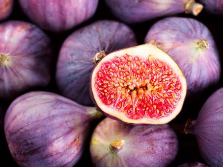 Higo y chile de Yahualica tendrán institutos de investigación para mejorar su producción y comercial