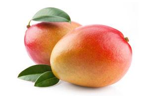 16 Mango