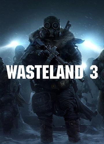 Ключ для игры Wasteland 3