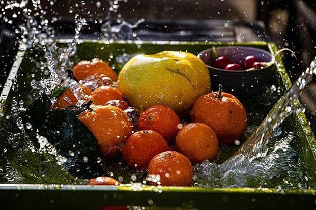 It's still Citrus Season! And these Wint