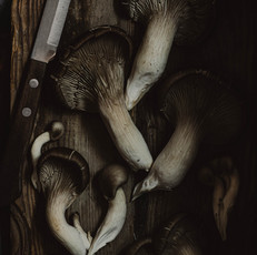 moody mushrooms.jpg
